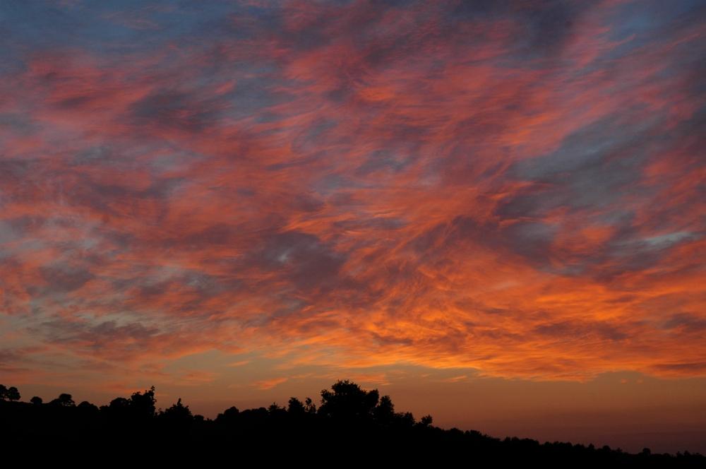Dawn010713